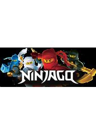 Конструкторы Ниндзя Го Ninja Go